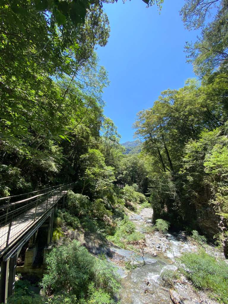 Taking a walk along the boardwalk amongst the wonderful natural surroundings on the Waterfall Trail in Aowanda National Forest